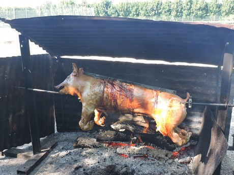 un-cochon-cuit-a-point